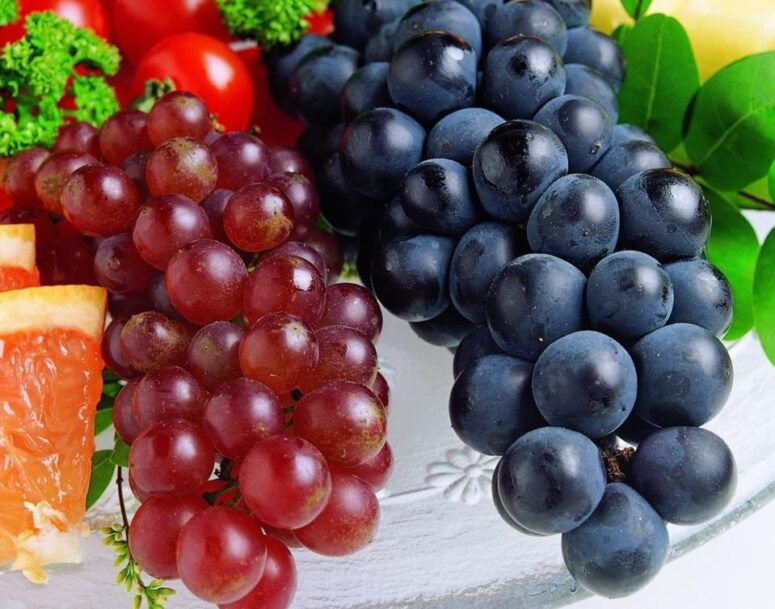 5 Red Grapes Worth Growing